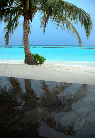 Vihamanafushi: View from the veranda