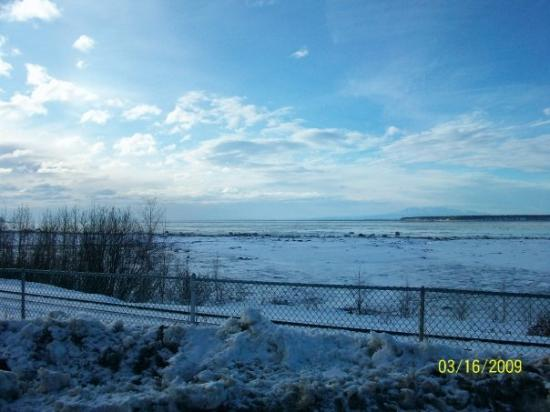 The Cook Inlet Off The Turnagain Arm Fotograf 237 A De