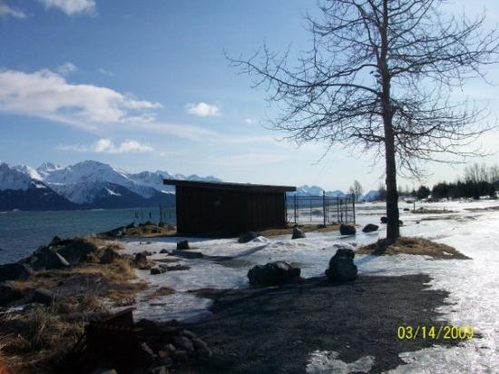 seward picture of seward alaska tripadvisor. Black Bedroom Furniture Sets. Home Design Ideas