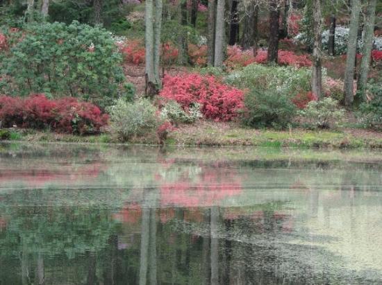 Pine mountain ga united states callaway gardens - Callaway gardens pine mountain georgia ...