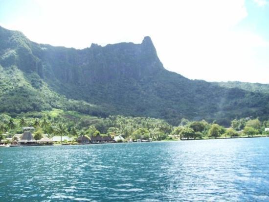 Μουρέα, Γαλλική Πολυνησία: Moorea Island.