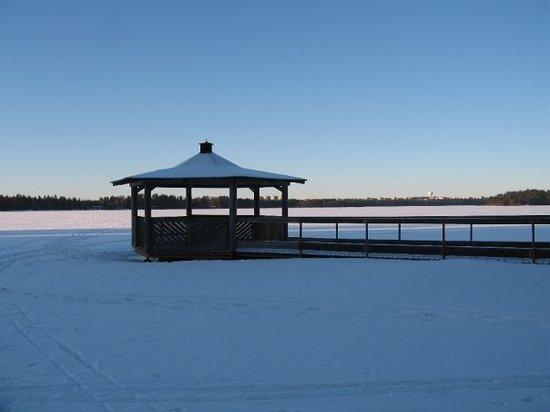 Umea, Sweden: Le lac Nydala