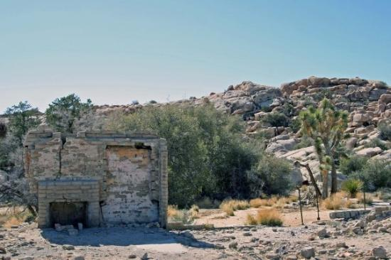 Joshua Tree National Park ภาพถ่าย
