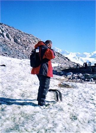 Port Lockroy: Penguin fallen in love. Antarctica, 2004 © jaume carrera