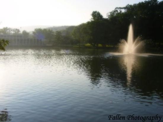 แอลทูนา, เพนซิลเวเนีย: Penn State Altoona