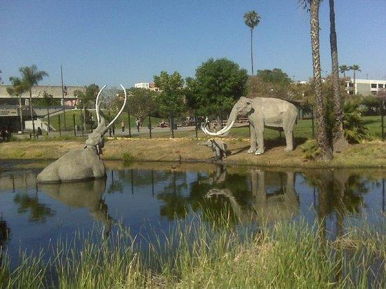 Park La Brea