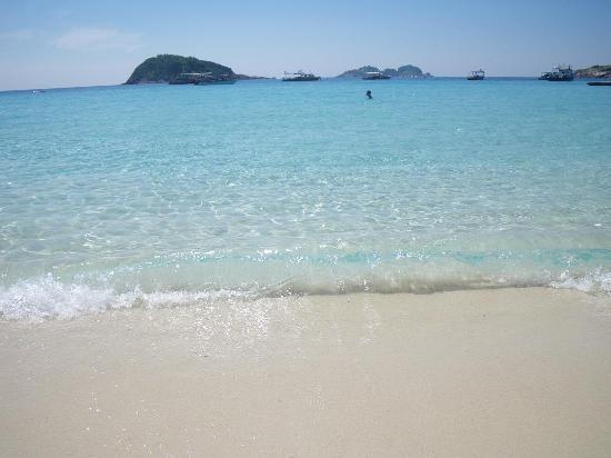 Coral Redang Island Resort: アジアで一番きれいな海