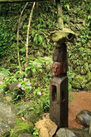 باجيو صورة فوتوغرافية