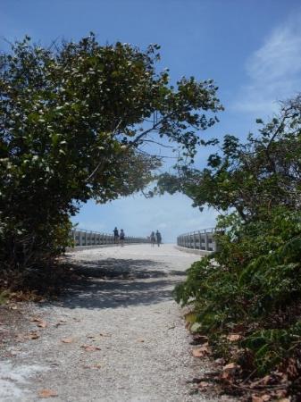 Big Pine Key ภาพถ่าย