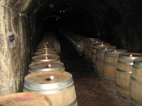 Del Dotto Vineyards & Winery ภาพถ่าย