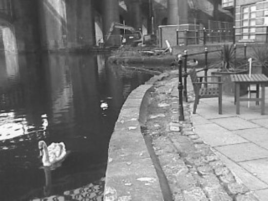 Castlefield Urban Heritage Park : Castlefields Manchester