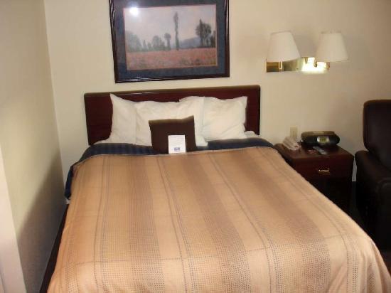 Candlewood Suites - Arlington: Bed