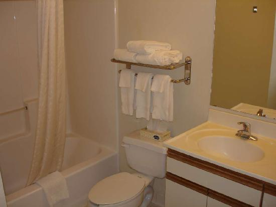 Candlewood Suites - Arlington: Bathroom