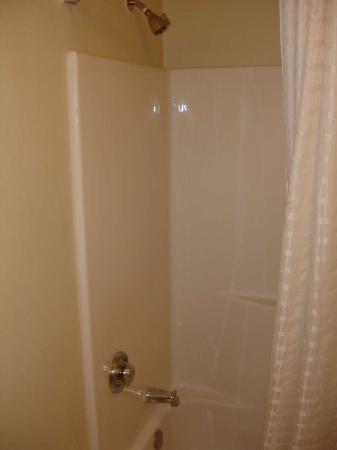 Candlewood Suites - Arlington: Shower