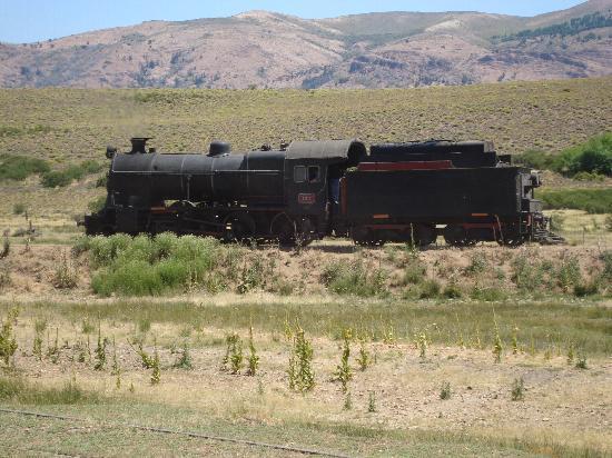 Tren Historico a Vapor Bariloche: locomotora en la estacion de los juncos