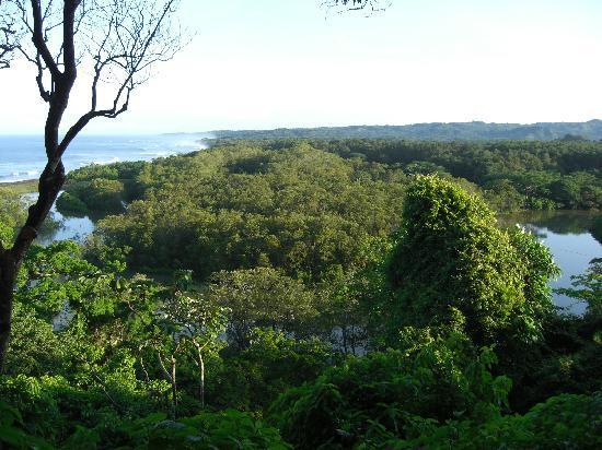 Villa Tortuga: Where the rivers meet the ocean