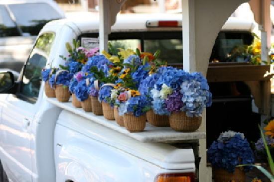 Nantucket, MA: truck selling flowers in town