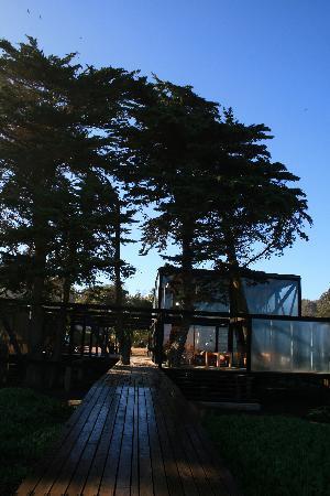 Matanzas, Chile: El hotel
