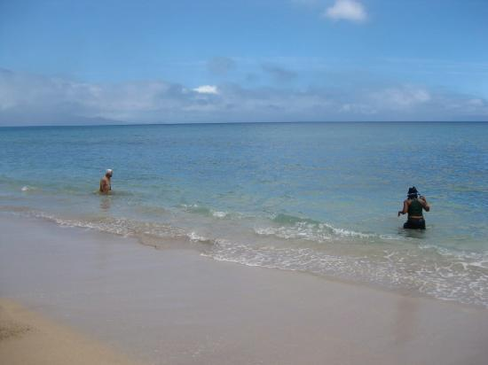 Kaanapali Ocean Inn: the beach front of the hotel