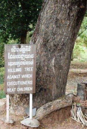ทุ่งสังหารเชิงเอก: The Killing Fields. This is the tree that the Khmer Rouge used to beat children to death.