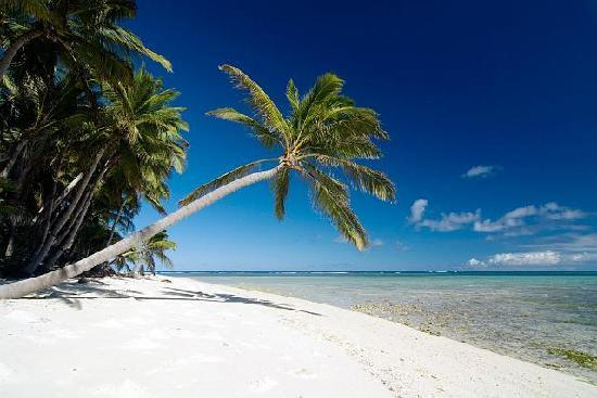 Cocos (Keeling) Islands: Typical beach - white, white sand & coconut palms