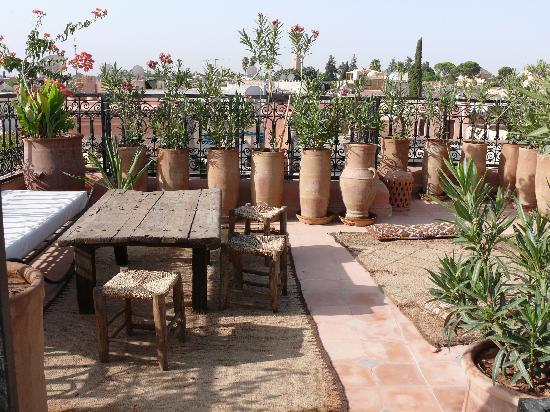 Riad Les Trois Palmiers El Bacha : la petite terrasse magnifique vue pour prendre un thé!!
