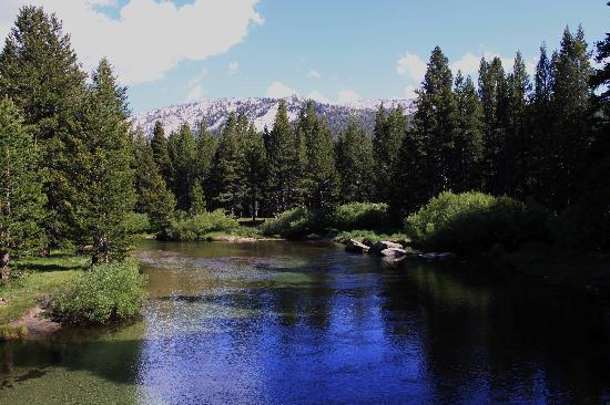 view from a bridge in Tuolumne Meadows