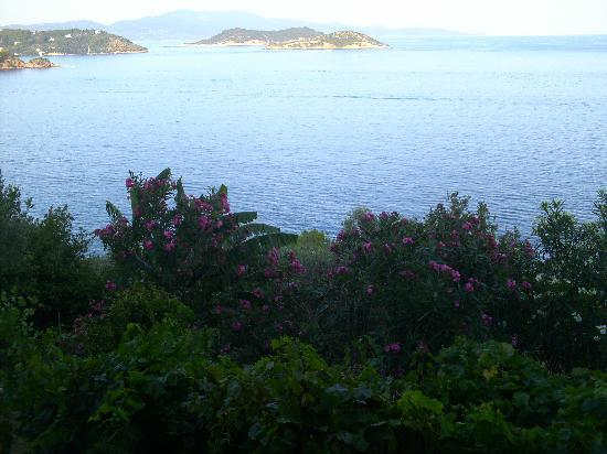 Villa Melia: View from Room