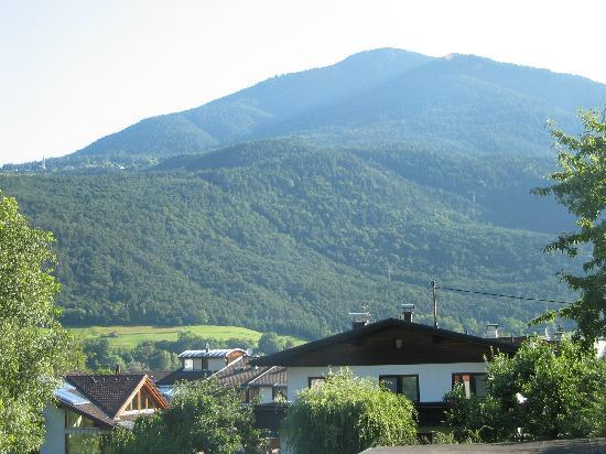 Gasthof zum Stollhofer: View from the room towards the north