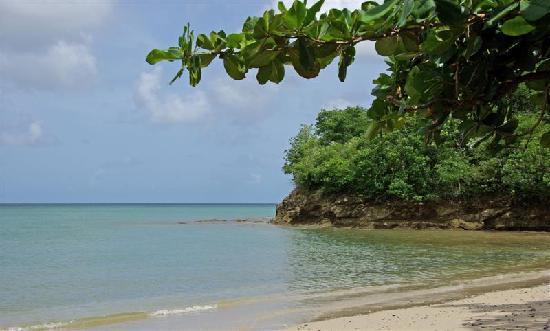 St. James's Club Morgan Bay: Beach layout at the resort.