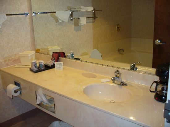 Comfort Inn Midway: king room