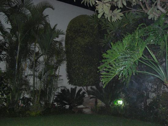 Paulina Youth Hostel: Dans le petit jardin de l'auberge