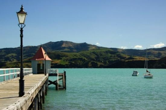 Akaroa harbor. I never wanted to leave.