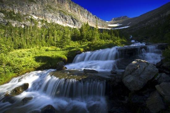 Glacier National Park Fotograf 237 A De Parque Nacional