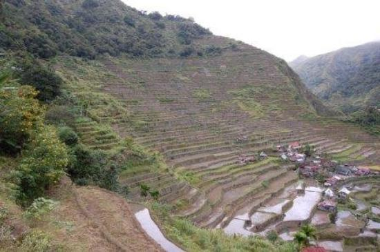 """Rice terraces. Sometimes called the """"Eighth Wonder of the World"""", the 2000 years old Banaue rice"""