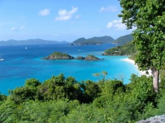 Virgin Islands National Park, เซนต์จอห์น: Trunk Bay,St. John USVI - The most beautiful beach on earth (or gets my vote anyway!)