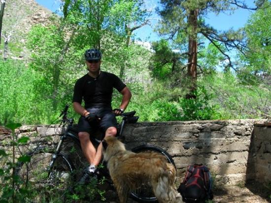 ฟอร์ตคอลลินส์, โคโลราโด: Mountain biking near Ft. Collins, CO with Luna.  (she doesn't ride)