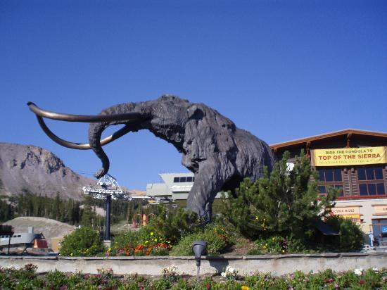 Hotels In Mammoth Lakes Ca