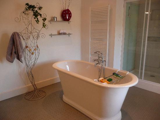Chateau La Cour: The bathroom