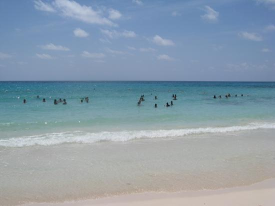 Valentin Imperial Riviera Maya: Adults playing like kids in the ocean.