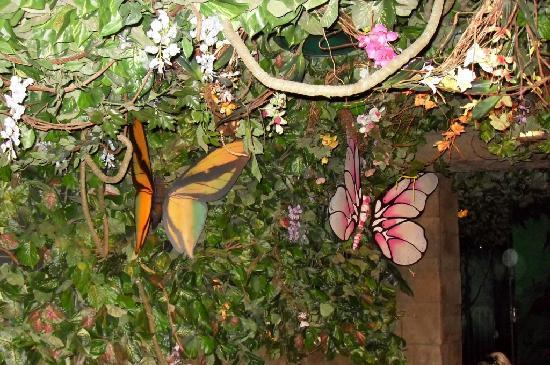 Rainforest Cafe Wall And Ceiling Decorations