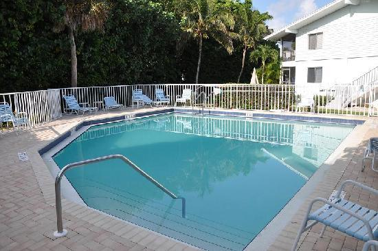 Colony Inn: Colony Pool
