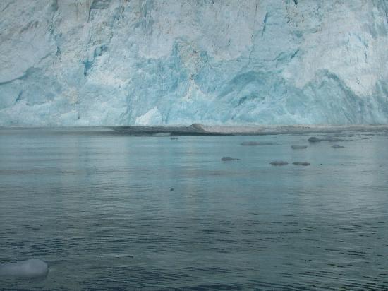 Alaska Saltwater Lodge: Holgate Glacier Calving