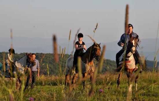 Carpathian Meadows (Karpats'ki Polonyny) Hotel: a walk in a mountains