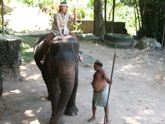 Villa Rosa: Abentuer Elefant