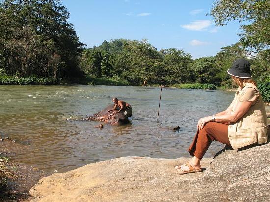 Villa Rosa: am grossen Fluss in kandy