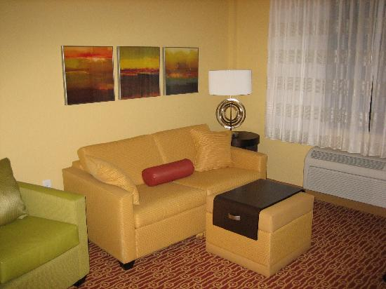 TownePlace Suites Albany Downtown/Medical Center: sitting area