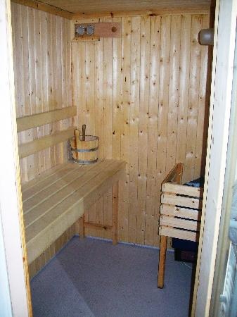 Woodlands Hotel & Pine Lodges: sauna in bathroom
