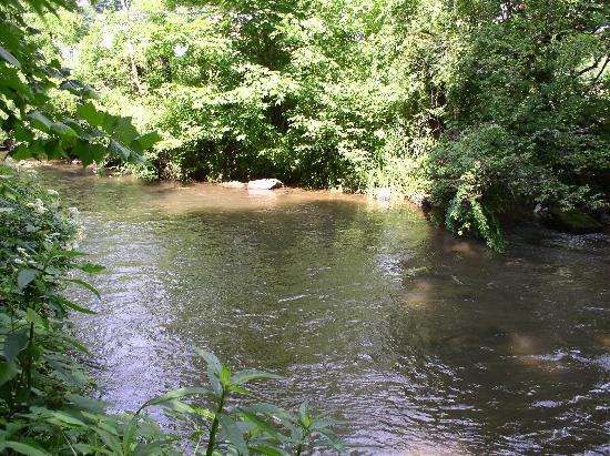 Panacea Coffeehouse Cafe & Roastery: Richland Creek behind the shop