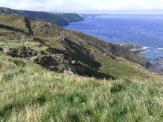 Trevigue : More from the Coastal Path